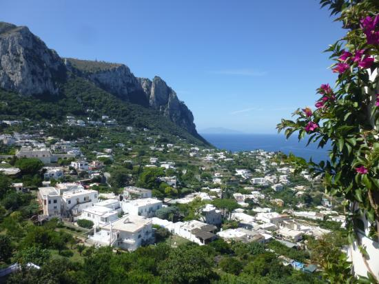 Capri のアルバム