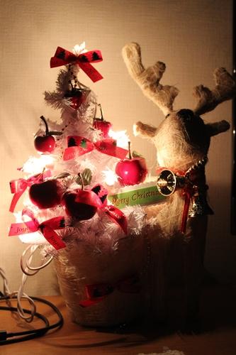 IMG_4669クリスマス