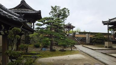 413 Go to Wakayama (18)