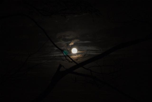 3日連続の月