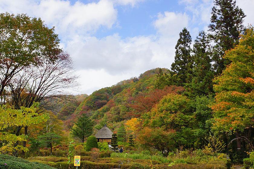 akishoku0001-1.jpg