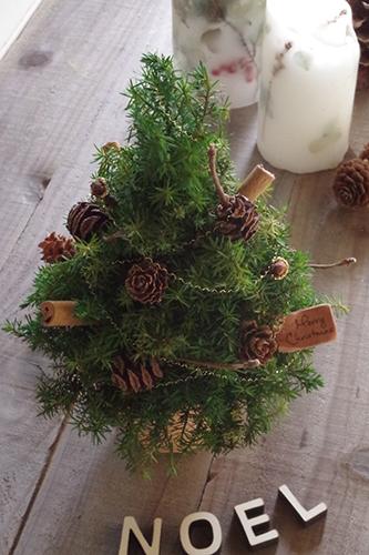 ちょっとしたスペースにも簡単にディスプレイできるナチュラルなクリスマスツリー