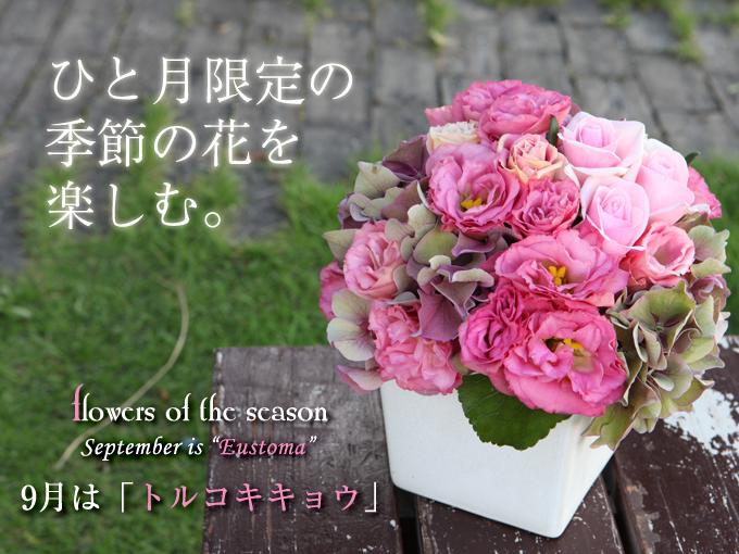 9月 誕生 花 プレゼント 秋