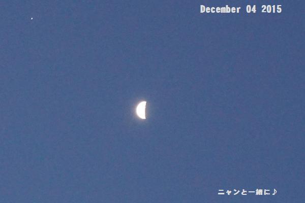 1104月と星