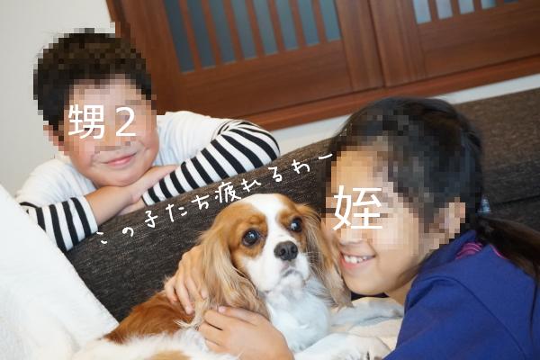 DSC08820.jpg