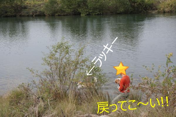 DSC09453.jpg