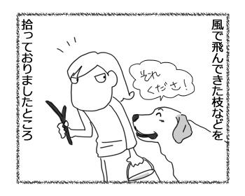 羊の国のラブラドール絵日記シニア!!「向きな作業」2