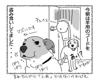 羊の国のラブラドール絵日記シニア!!「わかりまシタ」4