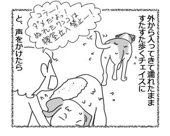 羊の国のラブラドール絵日記シニア!!「心コミュニケーション」2