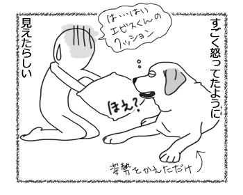 羊の国のラブラドール絵日記シニア!!「飼い主めがね」4