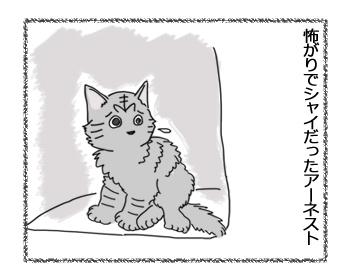 羊の国の猫日記ログ8_2