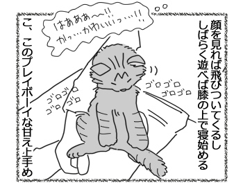 羊の国の猫日記ログ8_4