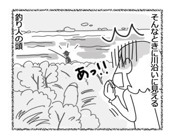 羊の国のラブラドール絵日記シニア!!「強風めっ!Part1」3