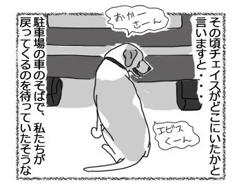 羊の国のラブラドール絵日記シニア!!「強風め!」5