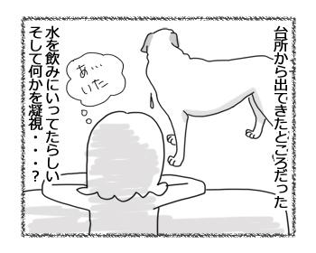 羊の国のラブラドール絵日記シニア!!「いま何時?」2