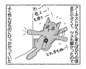 羊の国の猫日記ログ9_1