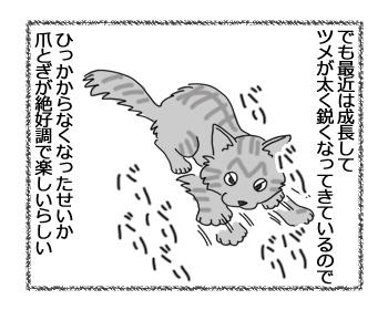 羊の国の猫日記ログ9_3