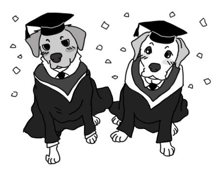 羊の国のラブラドール絵日記シニア!!「犬たちのGraduation」1