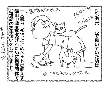 羊の国の猫日記エピソード10_1