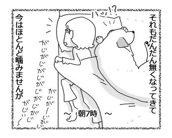 羊の国のラブラドール絵日記シニア!!「チェイスのクセ」3