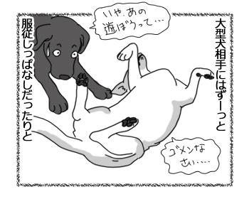 羊の国のラブラドール絵日記シニア!!「借りてきたチェイス」3