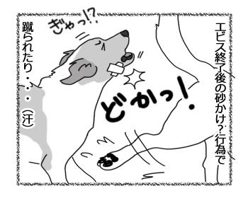 羊の国のラブラドール絵日記シニア!!「かけられたり蹴られたり」4