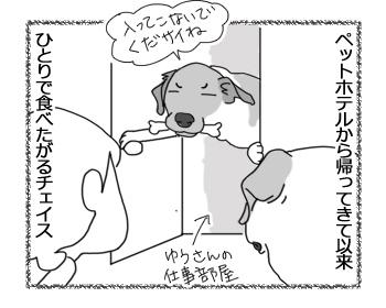 羊の国のラブラドール絵日記シニア!!「一体なにが・・・?」3