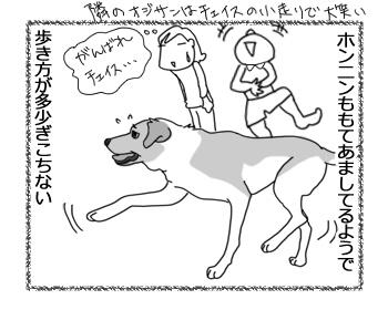 羊の国のラブラドール絵日記シニア!!「顔はやめなよ!」2