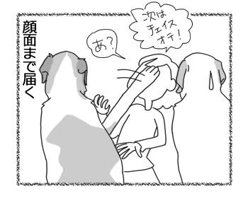 羊の国のラブラドール絵日記シニア!!「顔はやめなよ!」4