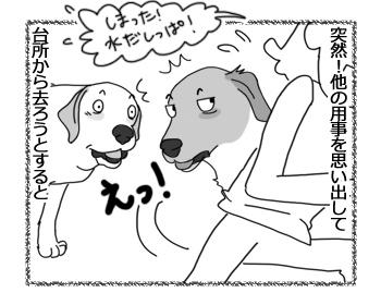 羊の国のラブラドール絵日記シニア!!「兄弟の表情」2