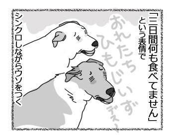 羊の国のラブラドール絵日記シニア!!「兄弟の表情」4