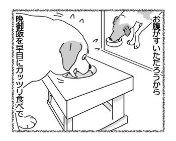 羊の国のラブラドール絵日記シニア!!「ハードスケジュールとアシスタント」3