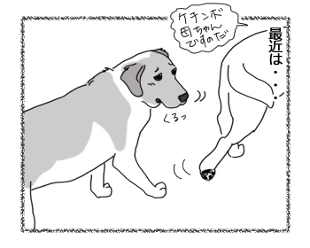 羊の国のラブラドール絵日記シニア!!「我が家の伝統?」3