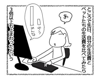 25112015_4.jpg