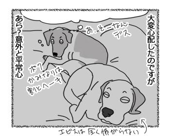 27112015_3.jpg