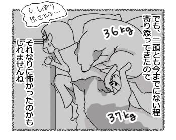 羊の国のラブラドール絵日記シニア!!「羊の国の悪天候」4