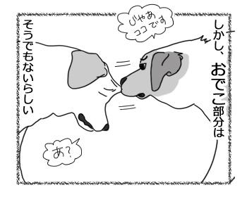 羊の国のラブラドール絵日記シニア!!「おでこはやめなよ」4