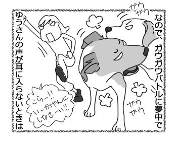 羊の国のラブラドール絵日記シニア!!「チェイスの弱点?」2