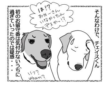 羊の国のラブラドール絵日記シニア!!「はじめてのお留守番」4
