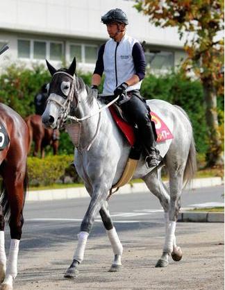 【競馬】スマートレイアーの末脚凄すぎワロタ(笑)