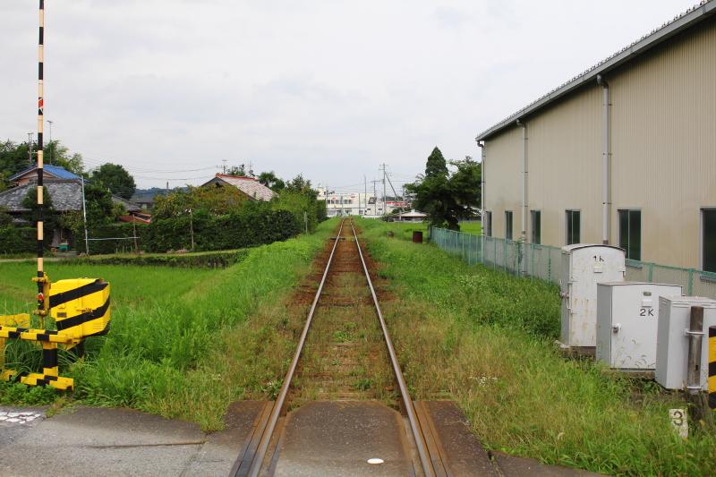 DPP_0000798.jpg