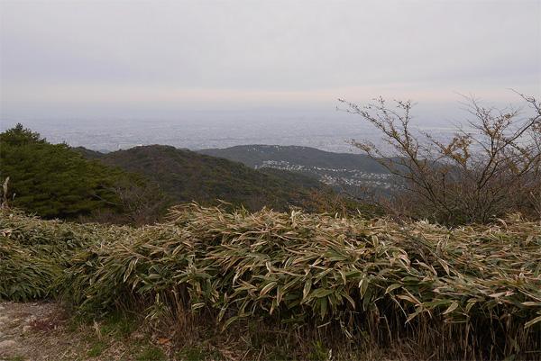 20151101-55.jpg