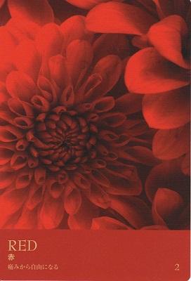 カラーカード:赤