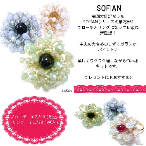 SOFIAN.jpg