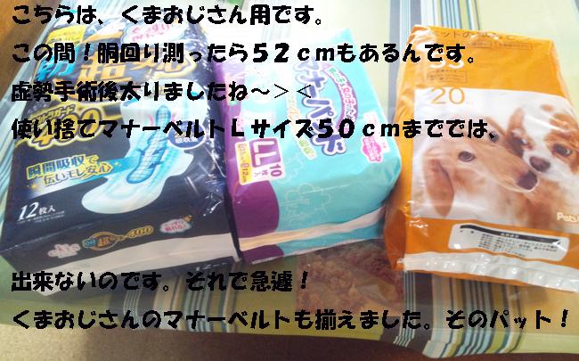 009-14689-3568790-55778.jpg