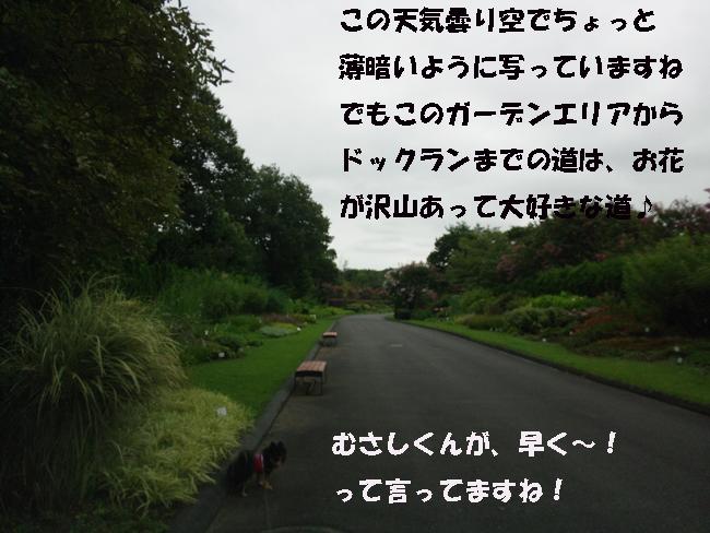 040-15789-444-665.jpg