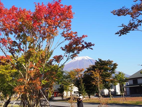hananomiyako-20151012-32s.jpg
