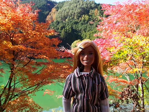 inagako-20151103-03s.jpg