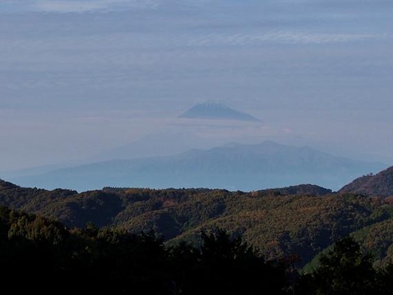 niji-20151121-17s.jpg