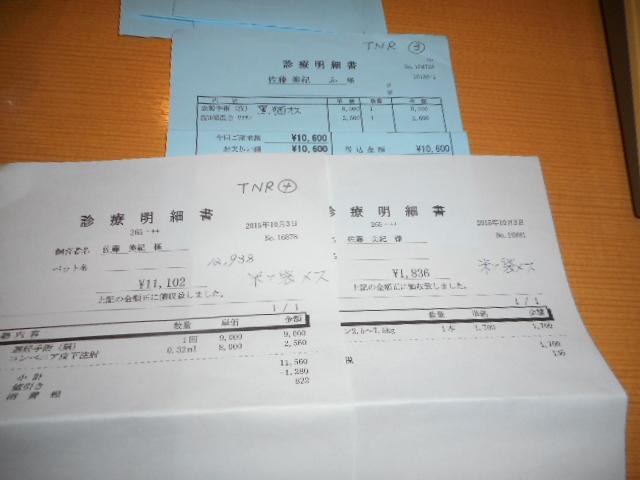 DSCN0100.jpg